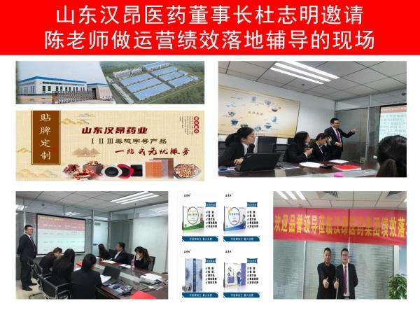 山东汉昂医药集团运营绩效管理咨询案例