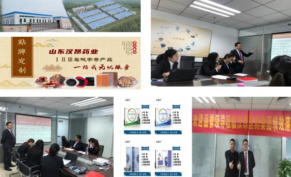 企业战略策划,目标市场营销策略案例分析